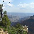 Grand Canyon 1 by Jocelyn Eastman