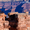 Grand Canyon 16 by Donna Corless