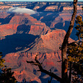 Grand Canyon 30 by Donna Corless