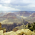 Grand Canyon Arizona Fine Art Photograph In Color 3540.02 by M K Miller