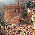 Grand Canyon Bluff by Nancy Taylor