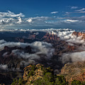 Grand Canyon Fog by James Menzies