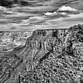 Grand Canyon In Black And White by Norman Gabitzsch