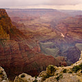 Grand Canyon In The Spring by James BO  Insogna