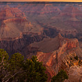 Grand Canyon Morning Light by Andre Distel
