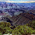 Grand Canyon National Park  by Anthony Dezenzio