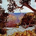 Grand Canyon National Park - Winter On South Rim by Glenn Smith