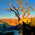 Grand Canyon National Park Winter Sunrise On South Rim by Glenn W Smith