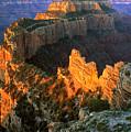 Grand Canyon North Rim by Johan Elzenga