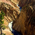 Grand Canyon Of The Yellowstone 2 by Marty Koch