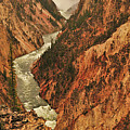 Grand Canyon Of The Yellowstone Vertical Panorama by Greg Norrell