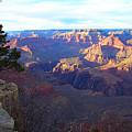 Grand Canyon South Rim by Michael C Crane