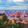 Grand Canyon South Rim View by Susan Vineyard