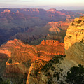 Grand Canyon Sunset by JQ Licensing