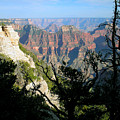 Grand Canyon Sunset On North Rim by Sherry Smith