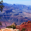 Grand Canyon View by Susanne Van Hulst
