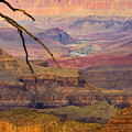 Grand Canyon Vista by Joy McAdams
