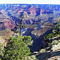 Grand Canyon14 by George Arthur Lareau
