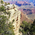 Grand Canyon17 by George Arthur Lareau