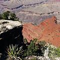 Grand Canyon35 by George Arthur Lareau