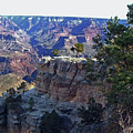 Grand Canyon7 by George Arthur Lareau
