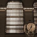 Grand Central Station by Henri Irizarri
