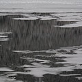 Grand Lake Evergreen Reflection On Ice I by Jacqueline Russell