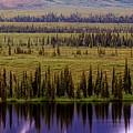 Grand Mountain Reflections by Patricia Twardzik