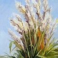 Grand Pampas by Cheryl Pass
