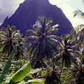Grand Piton by Carl Purcell