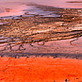Grand Prismatic Algae Mat Panorama by Adam Jewell