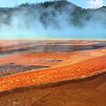 Grand Prismatic Spring, Yellowstone by Dia Karanouh