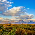 Grand Teton Fall by Thomas Levine