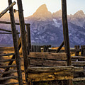 Grand Teton Framed by Priscilla Burgers