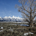 Grand Tetons From Gros Ventre by Belinda Greb