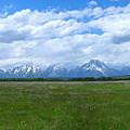Grand Tetons Meadow Panarama by George Jones