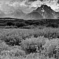 Grand Tetons by Patrick  Flynn