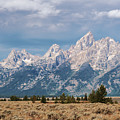 Grand Tetons by Sharon Seaward