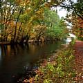 Grand Western Canal At Westcott by Rob Hawkins