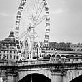Grande Roue In Paris - Black And White by Melanie Alexandra Price