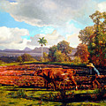 Grandfather Farm by Jose Manuel Abraham