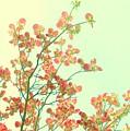 Grandma's Pink Dogwood by Wendy Rickwalt