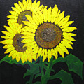 Grandmas Sunflowers by Todd Androy
