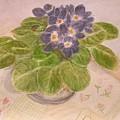 Grandma's Violets by Lucy McGuffey