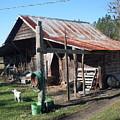 Grandpa's Barn by Warren Thompson