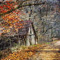 Grandpa's Old Barn by Debra and Dave Vanderlaan