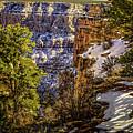 Grandview Winter At Grand Canyon by Brian Tada