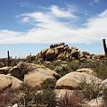 Granite Boulders And Saguaros  by Tom Janca