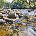 Granite Boulders East Okement River by Lawrence Dyer