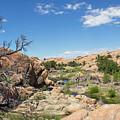 Granite Dells Rocky Terrain  by Amy Sorvillo